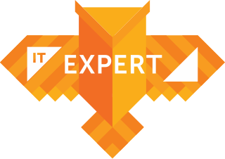 IT Expert logotype